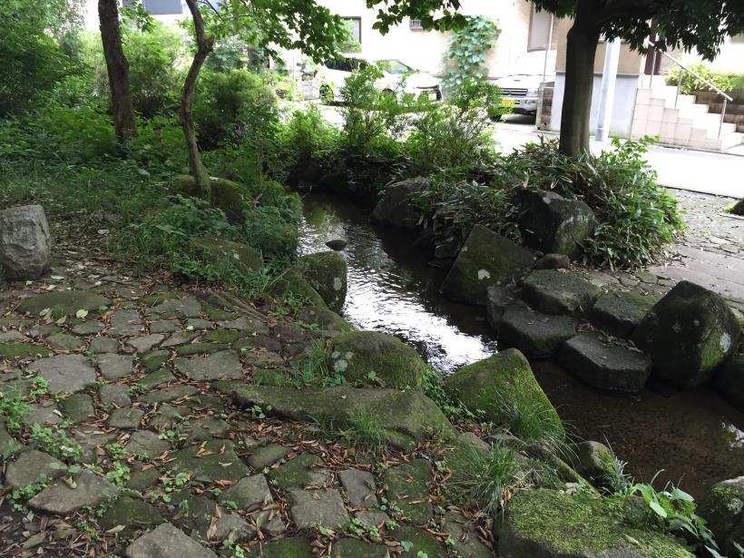 kurokawa09.jpg
