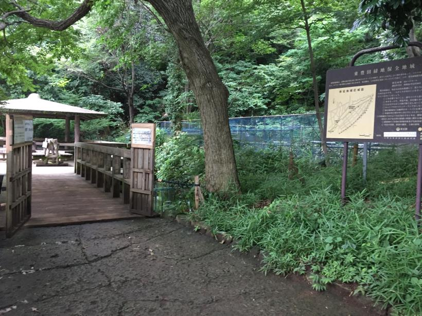 kurokawa23.jpg