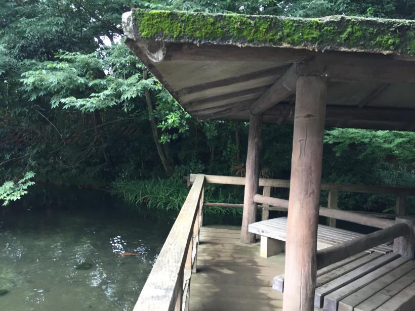 kurokawa28.jpg