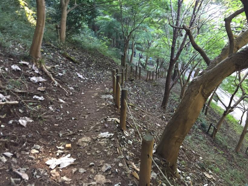 kusatoyamaA132.jpg