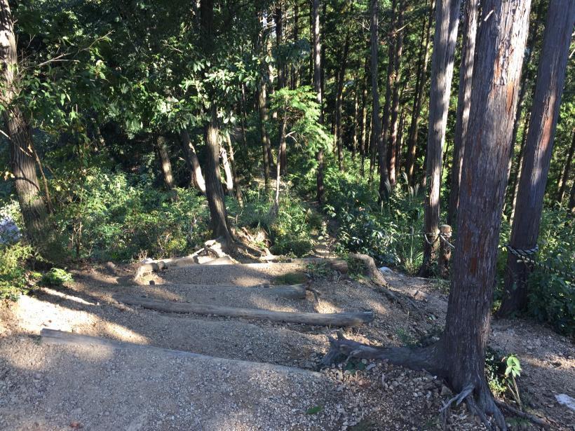 kusatoyamaA53.jpg