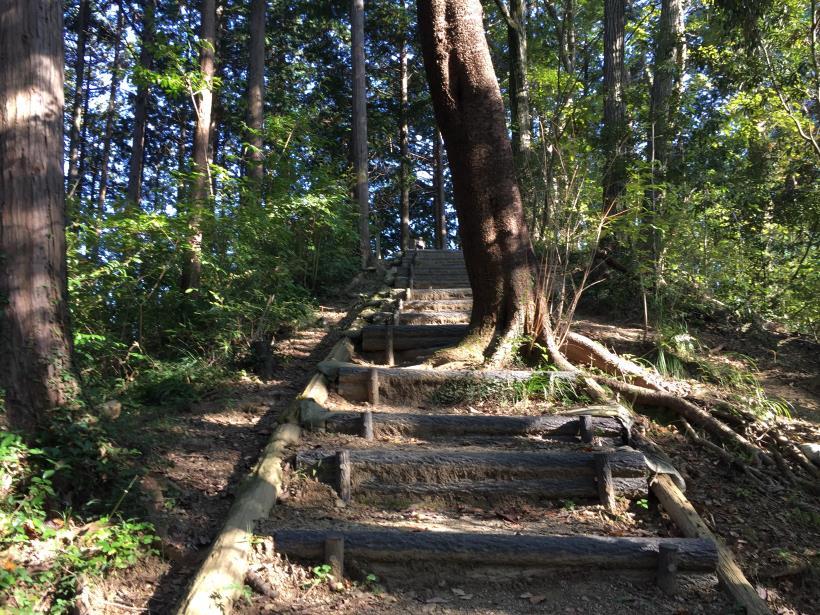 kusatoyamaA89.jpg