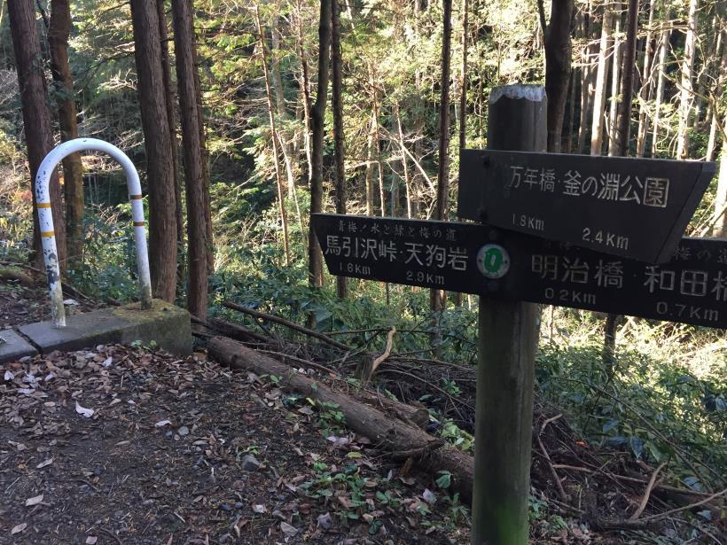 mahikisawakazamaki04.jpg