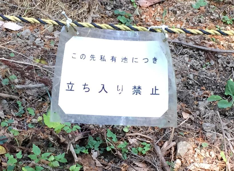 mahikisawakazamaki105B.jpg
