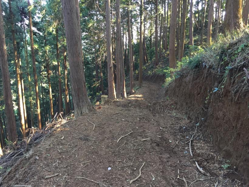 mahikisawakazamaki126.jpg