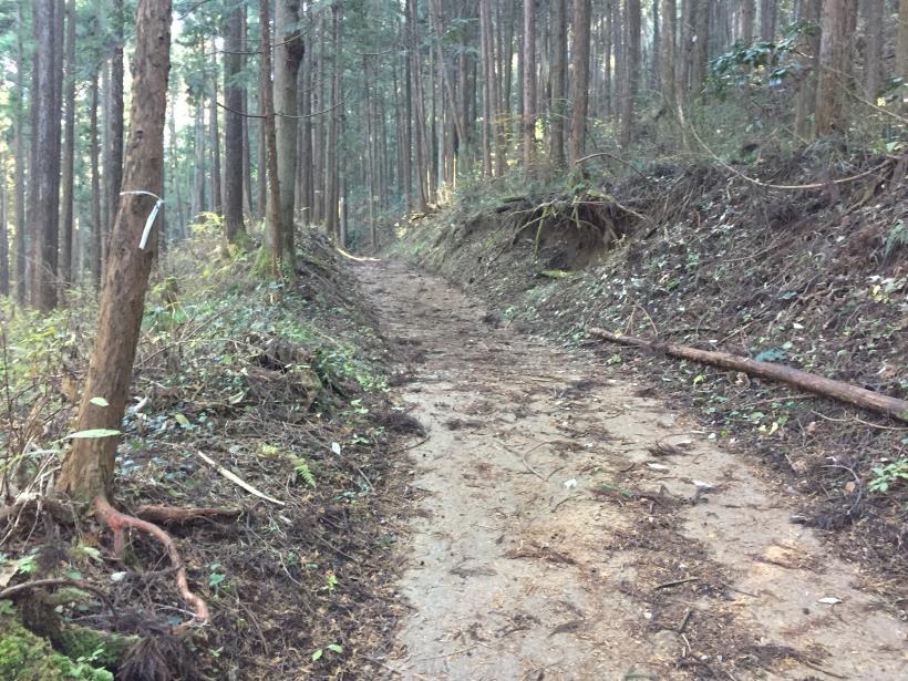 mahikisawakazamaki22.jpg