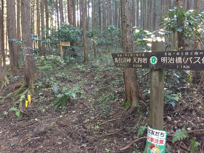 mahikisawakazamaki26.jpg