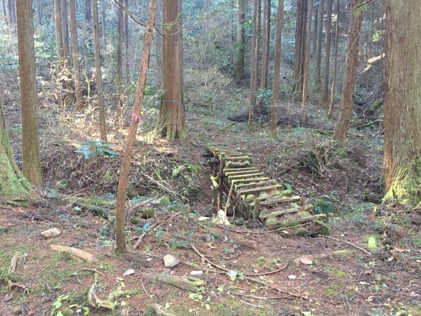 mahikisawakazamaki28.jpg