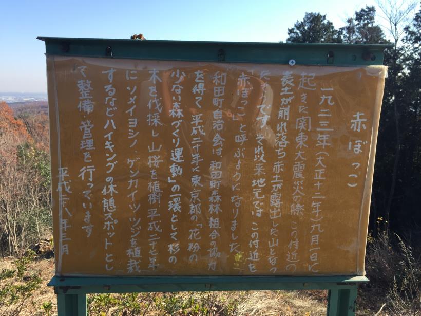 mahikisawakazamaki67.jpg