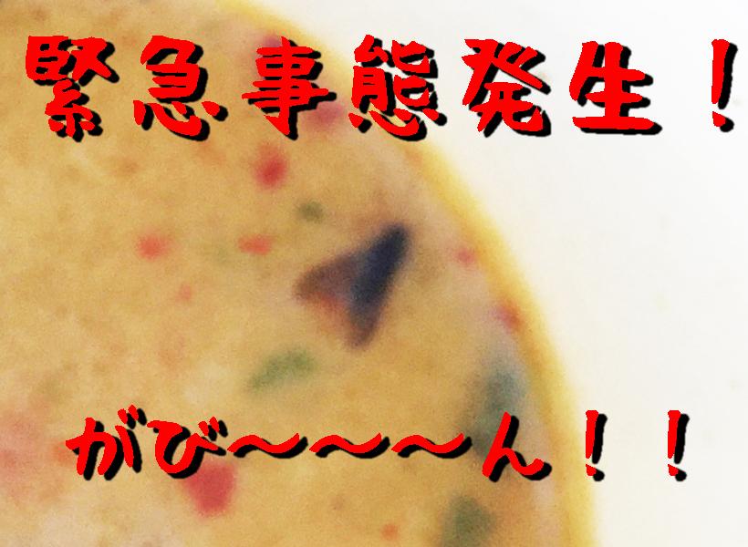 mahikisawakazamaki68B.jpg