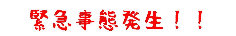 mahikisawakazamaki68C.jpg