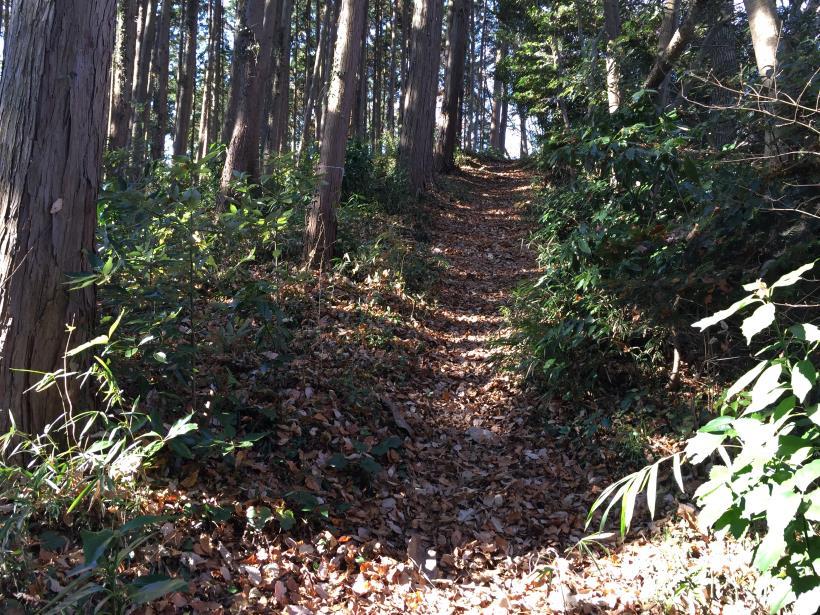 mahikisawakazamaki78.jpg