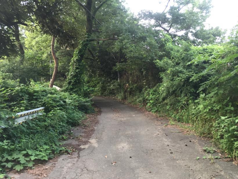 otokomichi09.jpg