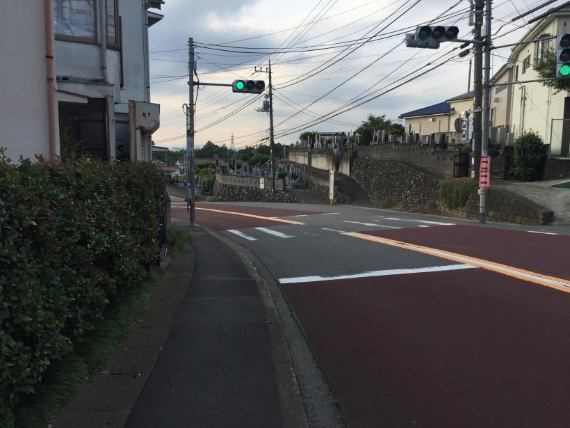 otokomichi49.jpg