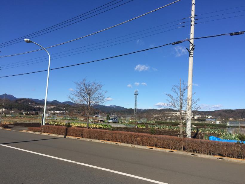 umenokidaizawa02.jpg