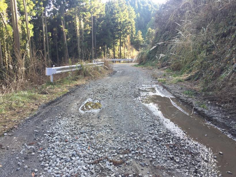 umenokidaizawa102.jpg