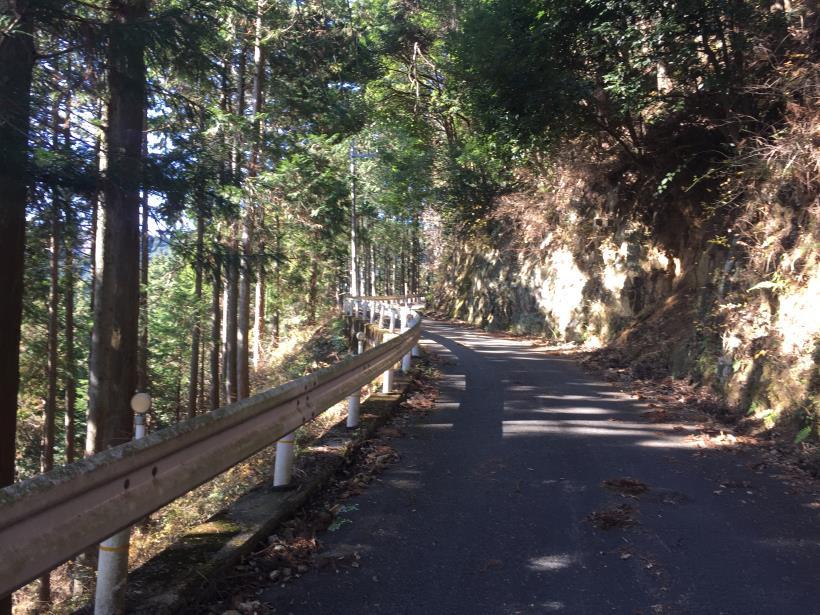 umenokidaizawa11.jpg