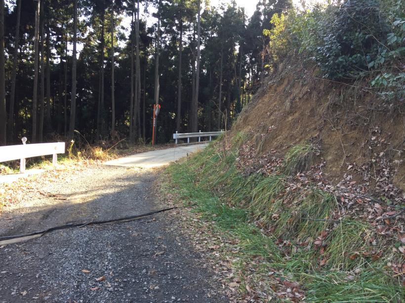 umenokidaizawa110.jpg