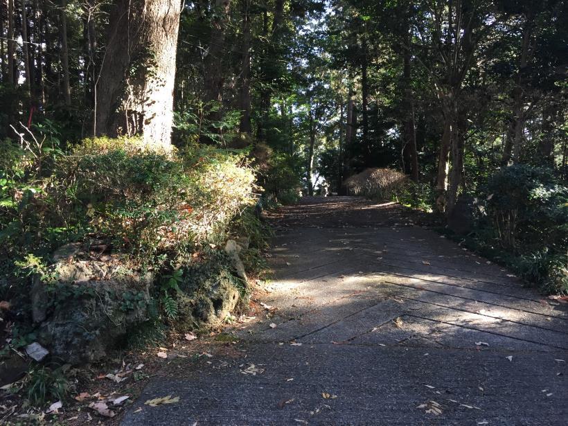 umenokidaizawa117.jpg