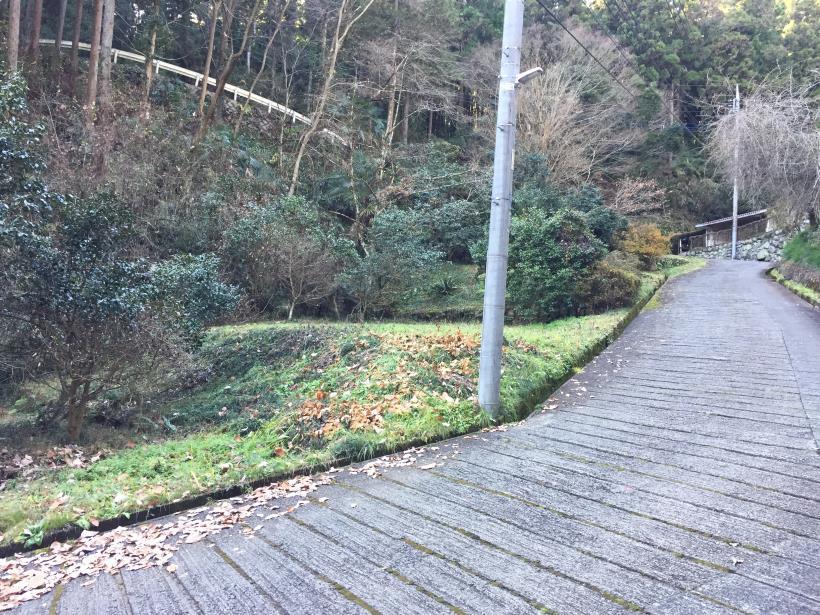 umenokidaizawa131.jpg