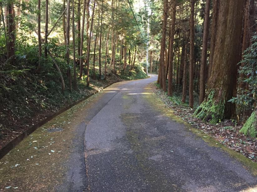 umenokidaizawa132.jpg