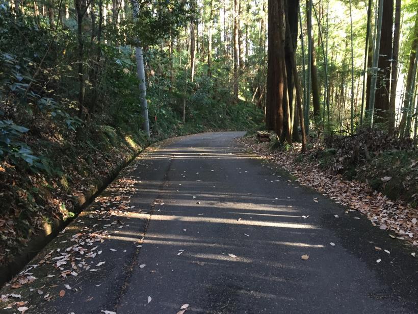 umenokidaizawa133.jpg