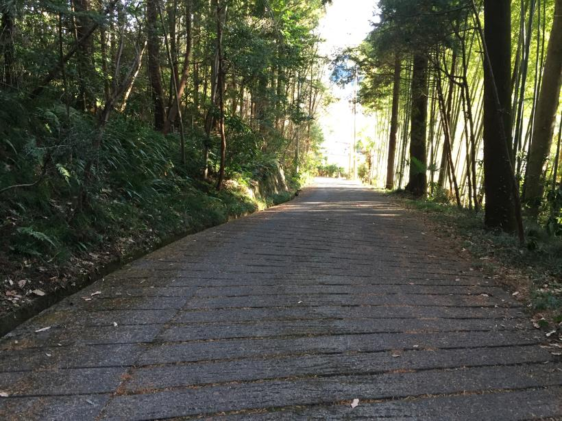 umenokidaizawa134.jpg