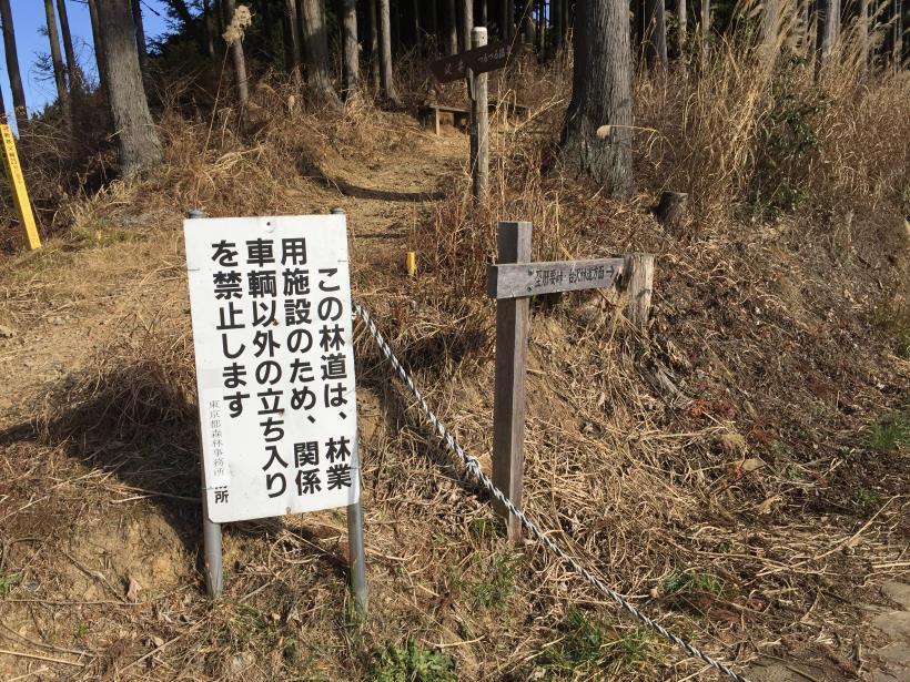 umenokidaizawa27.jpg