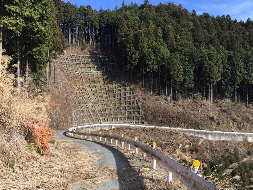 umenokidaizawa29.jpg