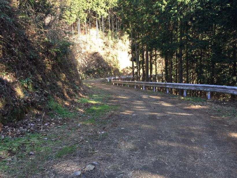 umenokidaizawa33.jpg