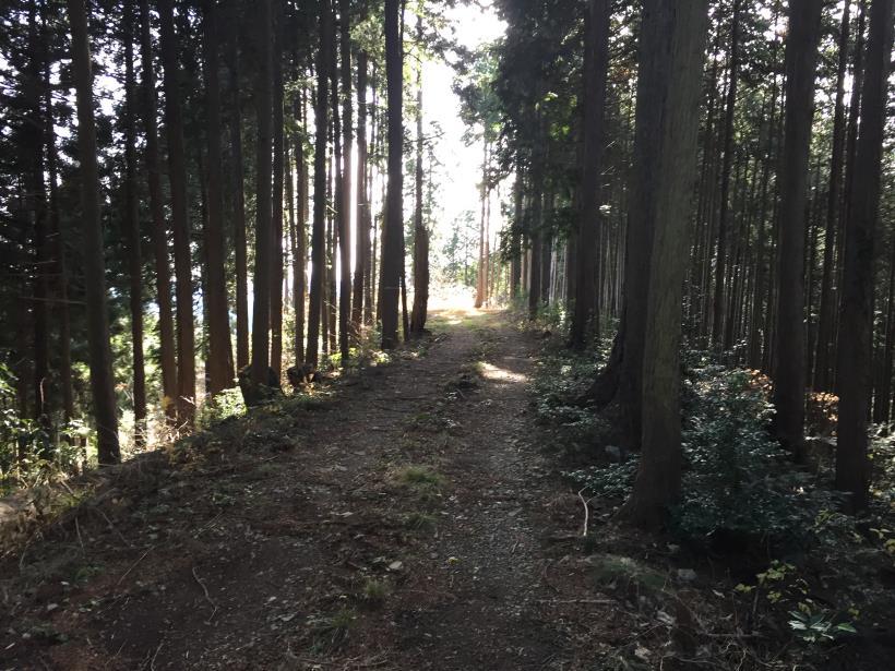 umenokidaizawa36.jpg