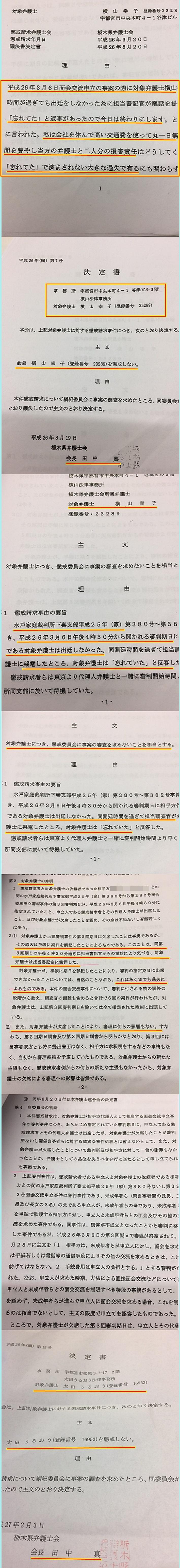 横山幸子弁護士 横山法律事務所 栃木県弁護士会 太田うるおう綱紀委員会