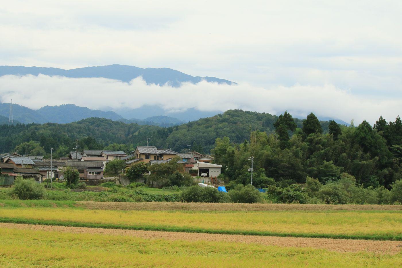 ●S2016・9・2上寺内_09