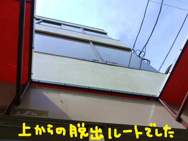 P1870597.jpg
