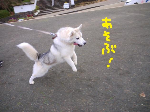 P2010769.jpg