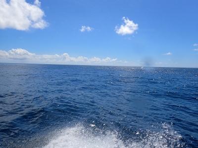 09-05 今日の海