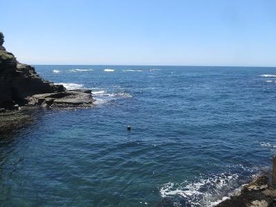 05-12 今日の海