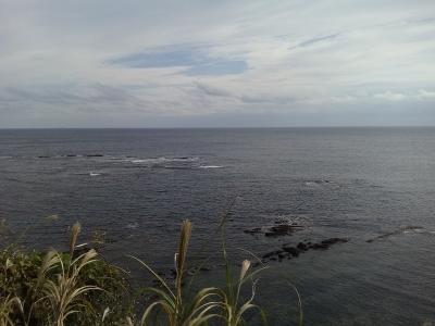 11-30 今日の海