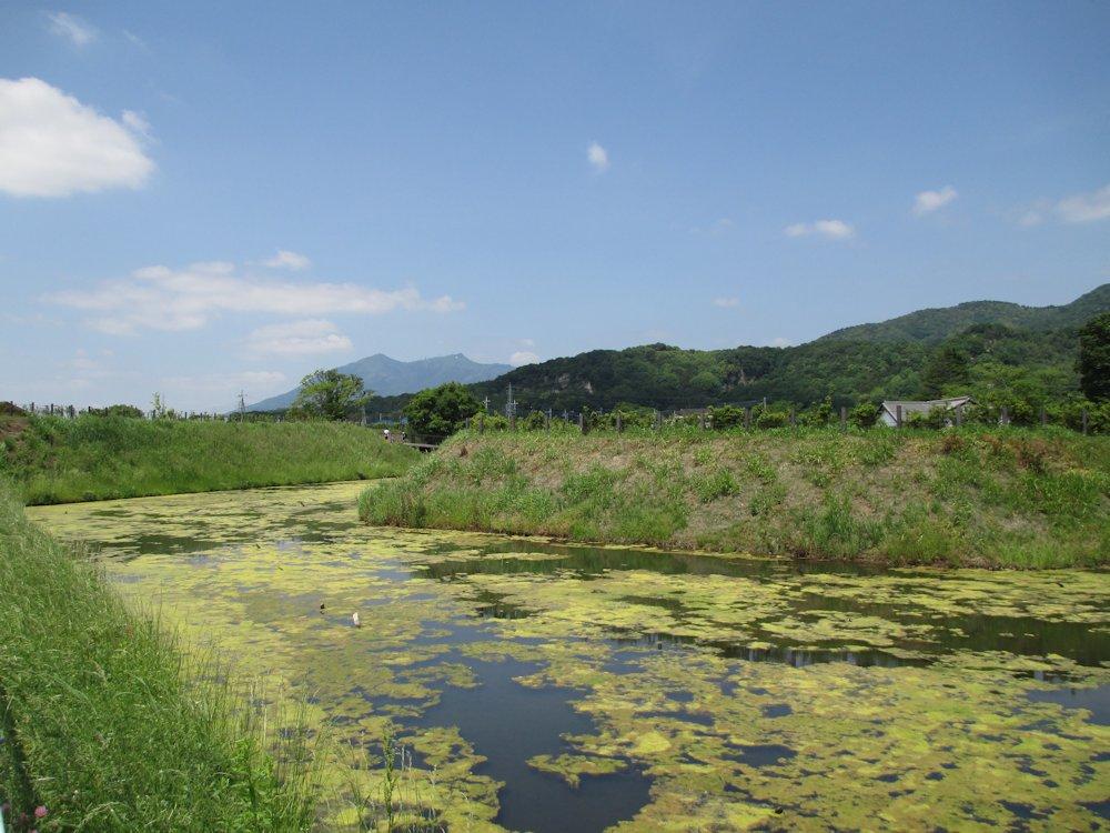 小田城 006-2