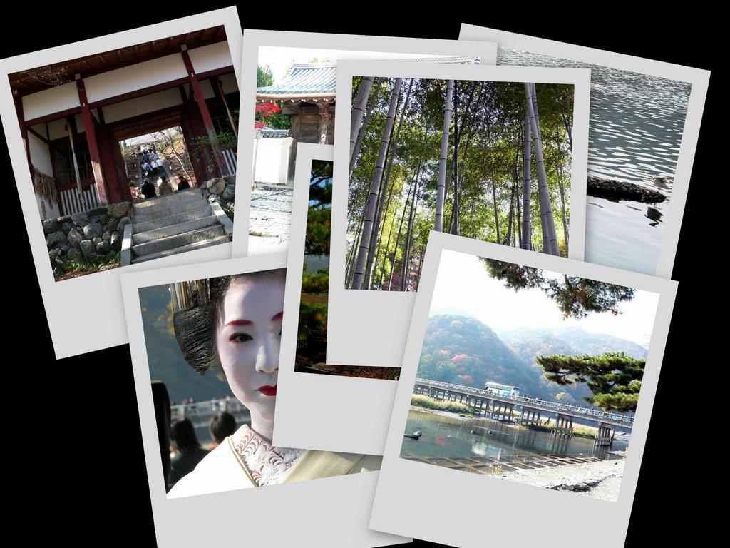 collage2_20161210210052881.jpg