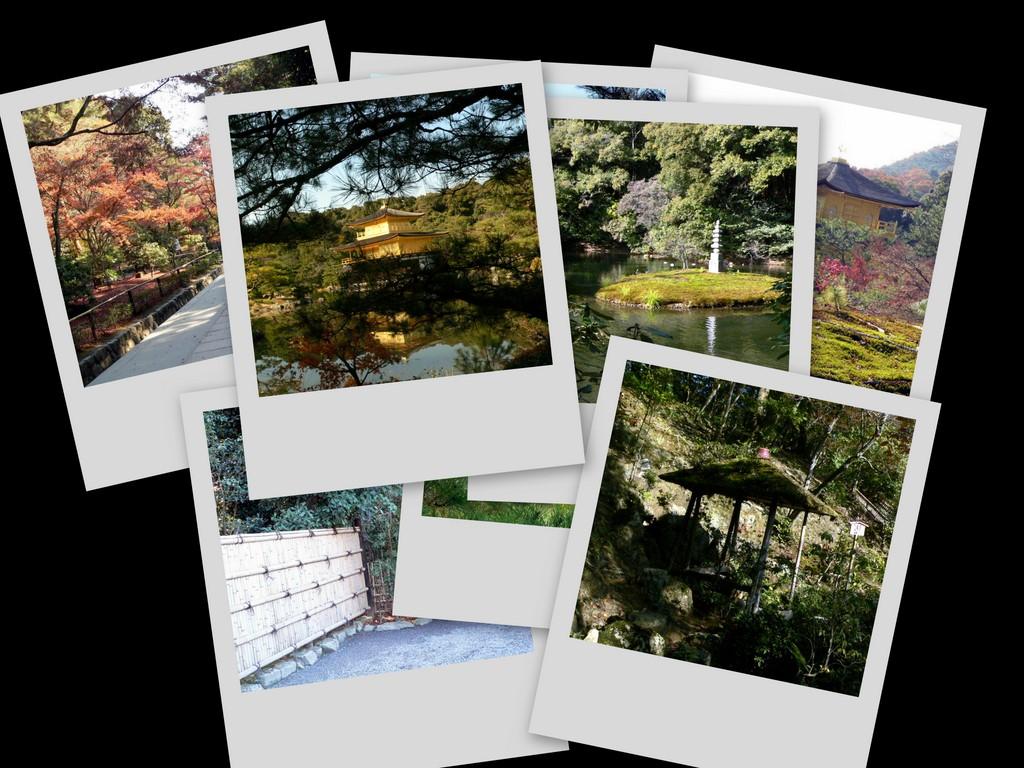 collage3_20161210210051063.jpg