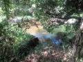 矢田自然の森03