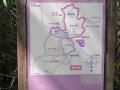 矢田自然の森18