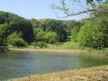 矢田自然の森09