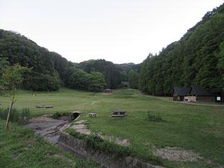 自然の森02
