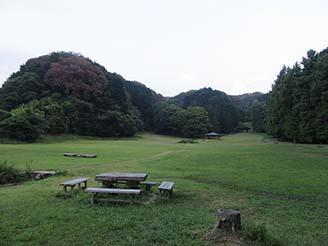 自然の森4