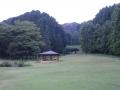 自然の森6