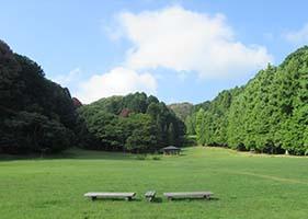 遊びの森4
