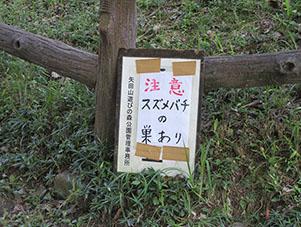 遊びの森2