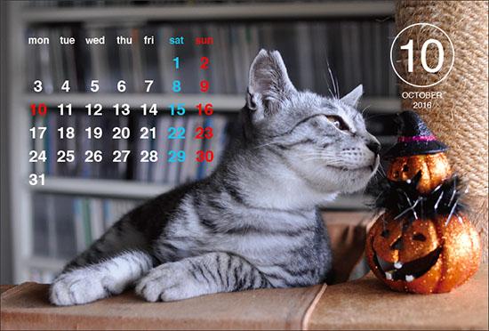 1061009_calendar.jpg